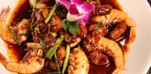 藏在青泥购物商圈里的饕餮大串,平民价格吃蓝带主厨推荐菜。