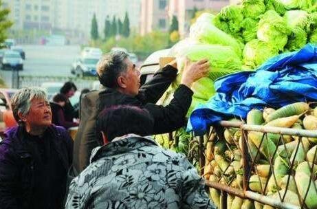 秋菜集中上市 供应充足价格略涨