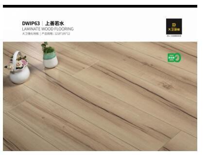 大卫地板:《浸渍纸层压木质地板》国家标准起草者
