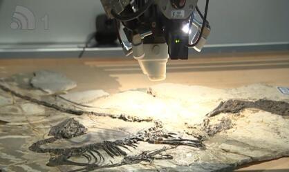 世界首张恐龙彩照写真在连诞生