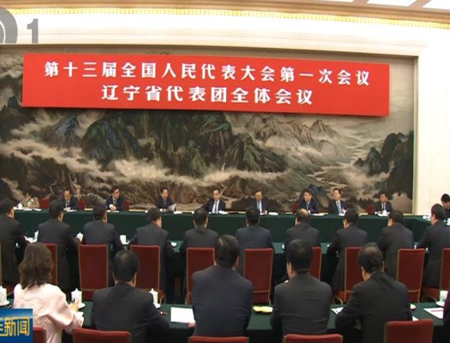 谭成旭在辽宁代表团审议政府工作报告时发言