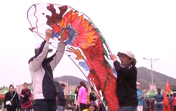 220名爱好者参加大连第6届风筝赛
