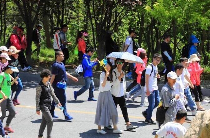 聚焦第16届大连国际徒步大会