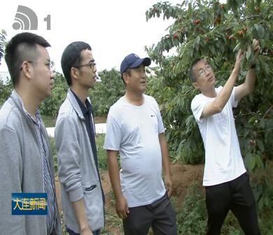 大连气象服务帮助农民增产增收