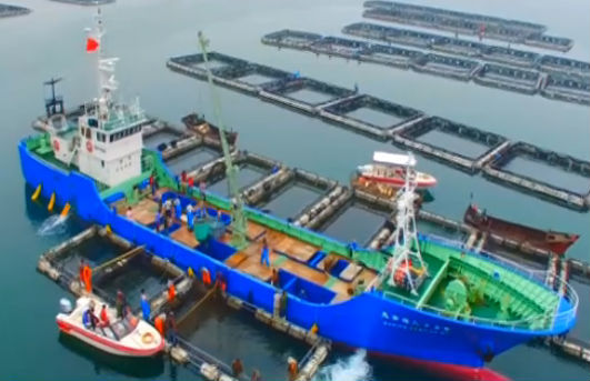 市海洋渔业局全力推进海洋渔业再上新台阶