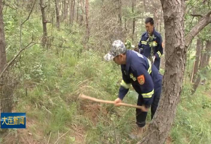 全市雨季营林造林启动  补植修复林地