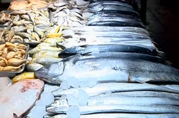 休渔结束 海鲜种类增多价格回落