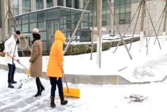 我市迎来2019年首场中雪