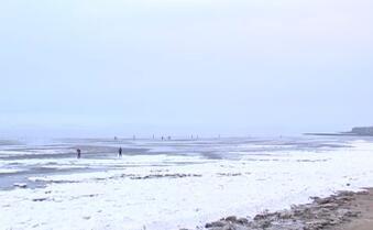 我市海域进入盛冰期 冰情轻于往年