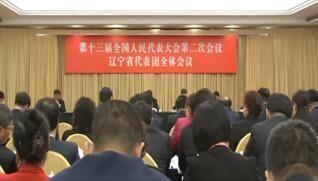 肖盛峰参加辽宁代表团全团审议外商投资法草案