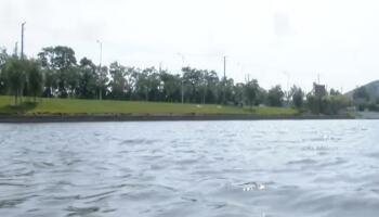 我市多措并举打造清水绿岸生态水体