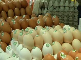 市民需求增加 蛋价回到4元以上