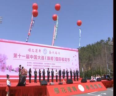 第十一届中国大连(旅顺)国际樱花节盛装启幕