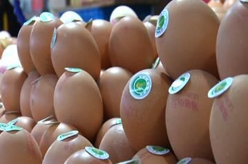 我市近期肉蛋价格上涨 蔬菜价格下降