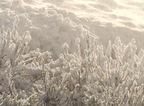 嬉冰雪 泡溫泉 到遼寧 過大年