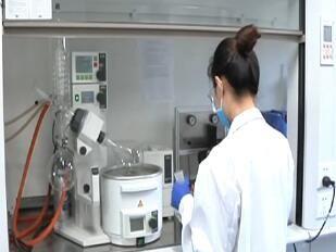 大连研发出新技术 有效抑制二噁英产生