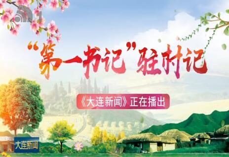 """""""第一書記""""駐村記:小王的""""大動作"""""""
