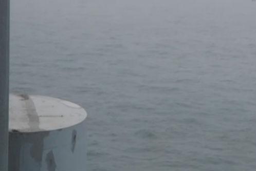 女子星海湾桥上轻生 众人协力营救