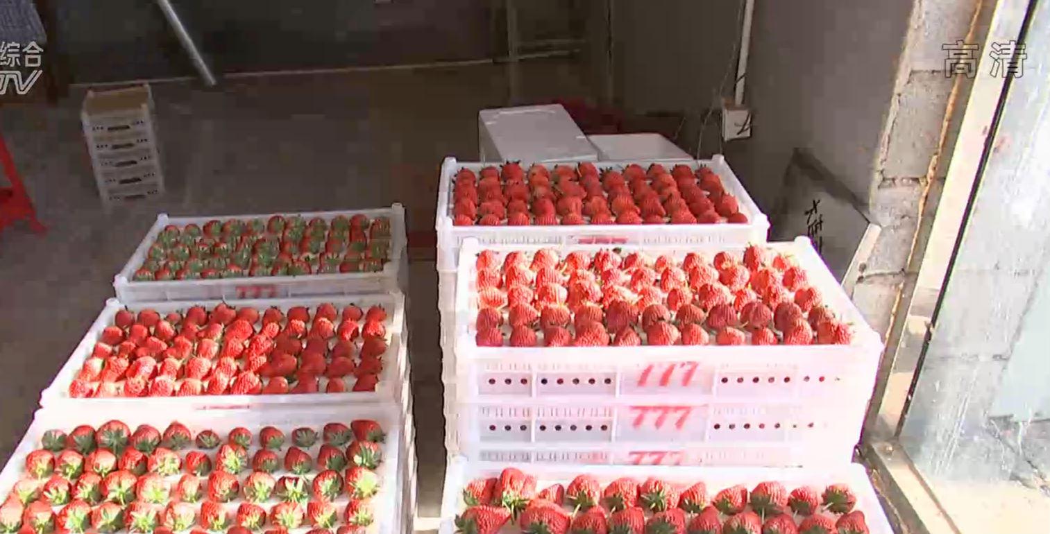 反季果蔬迎来节日上市高峰 价格小幅上涨