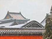 遼寧的雪真美— 一條鹵蛋